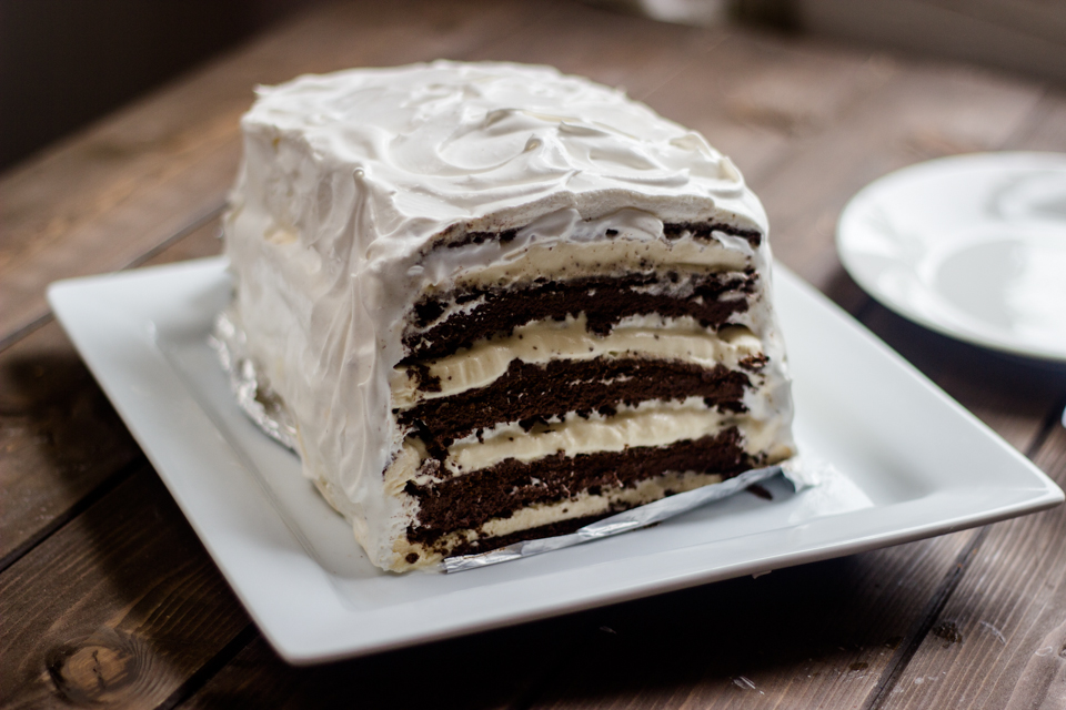 Easy Chocolate Vanilla Ice Cream Cake with ice cream sandwiches
