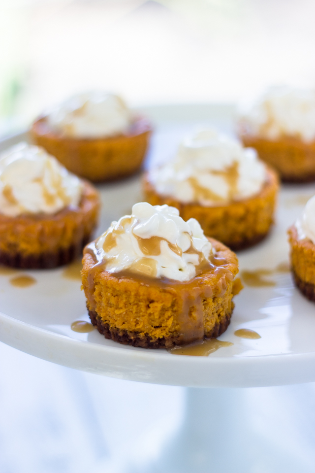 Mini Pumpkin Cheesecakes with Gingersnap Crust | Gimme Delicious