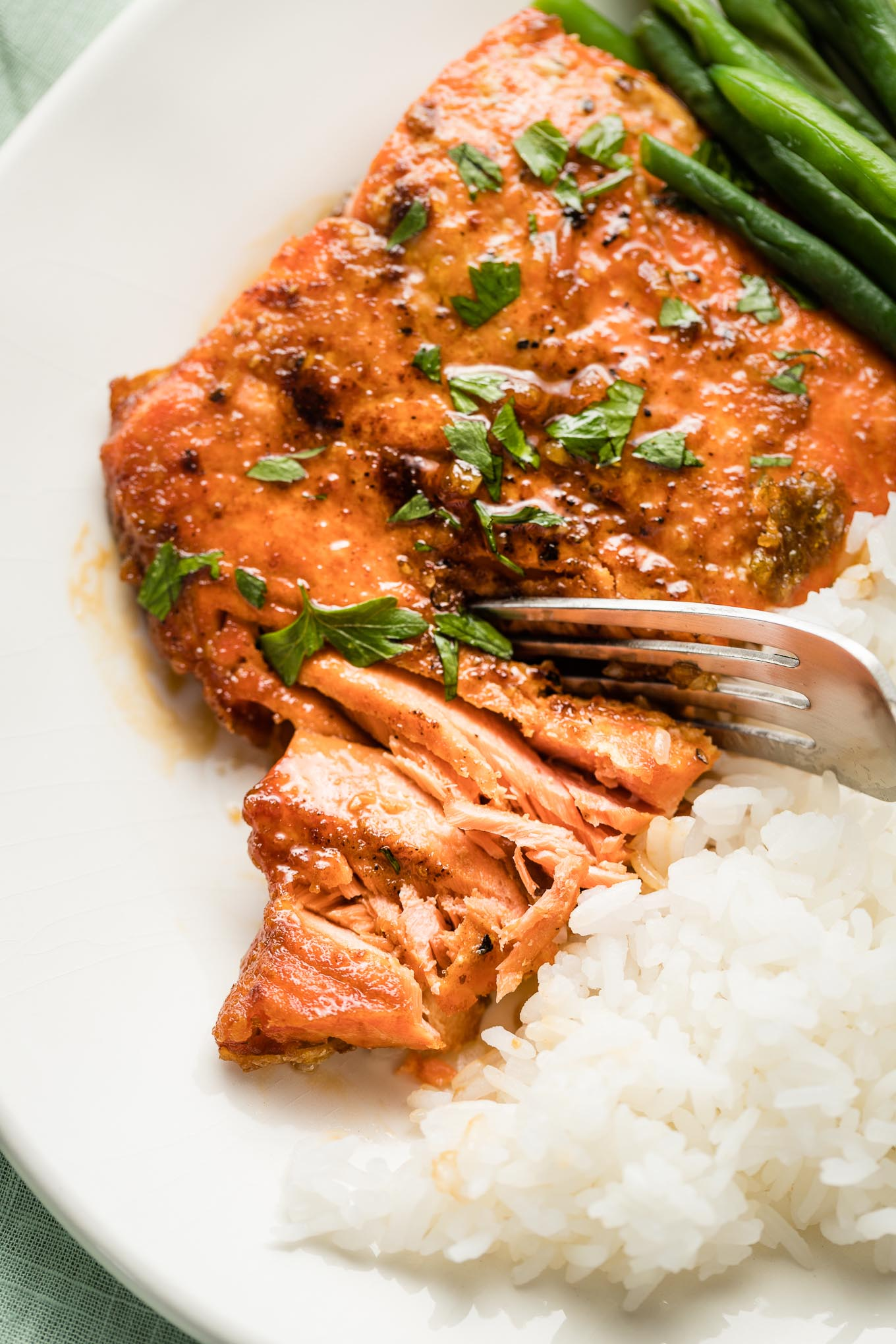 Close-up of flaked salmon.